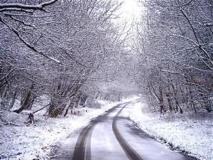 January 2016 services snow scene